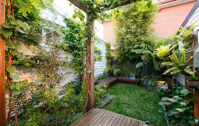 Trucos para transformar un patio de 50 m² en un vergel