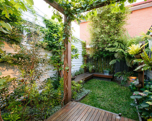 Houzz tropical garden design ideas remodel pictures for Tropical garden designs