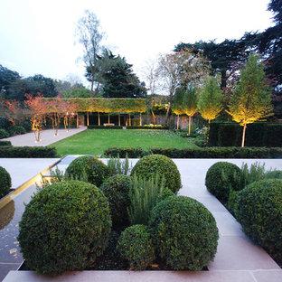 Exemple d'un grand jardin à la française arrière tendance avec une exposition ensoleillée et des pavés en béton.