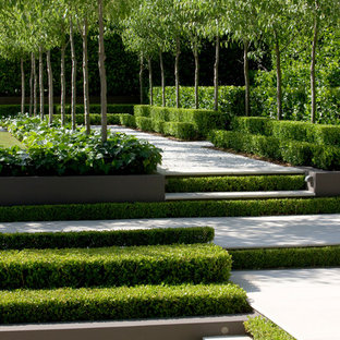 This is an example of a huge transitional partial sun formal garden in Sydney.
