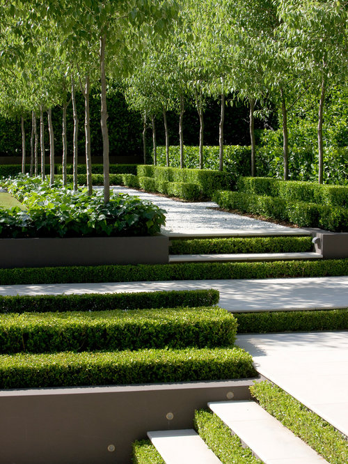 Transitional landscape ideas designs remodels photos for Land design landscaping