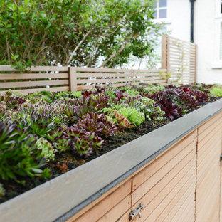 ロンドンの中サイズのコンテンポラリースタイルのおしゃれな前庭 (私道、砂利舗装) の写真