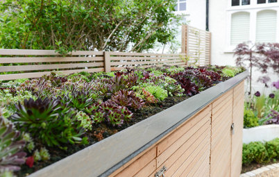 12 Enclosure Ideas for Trash Bins, Compost Piles and AC Units