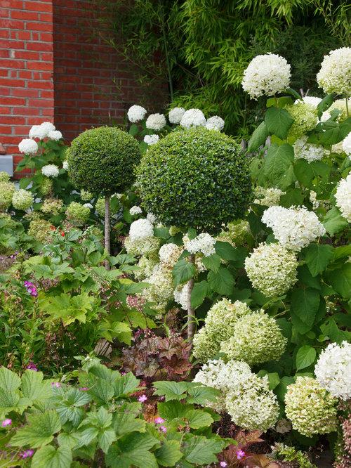 Front Garden Design Calton avenue