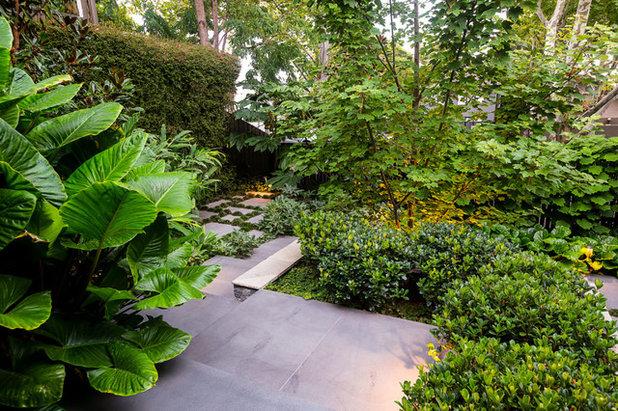 Contemporary Garden by Lisa Ellis Gardens