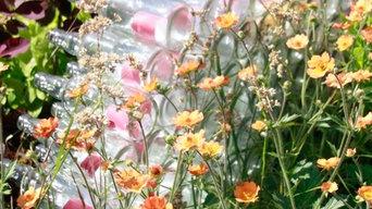 Front Garden Planting Schemes