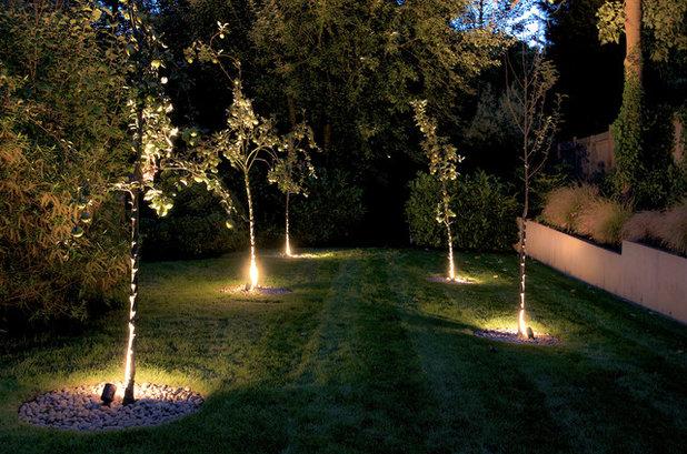 Contemporary Garden by Kate Eyre Garden Design
