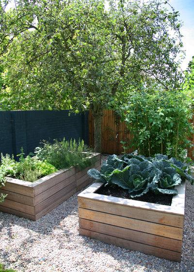 Traditional Garden by Kate Eyre Garden Design
