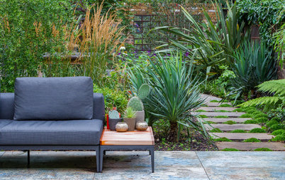 Lush Foliage and Bold Furniture Transform a City Yard
