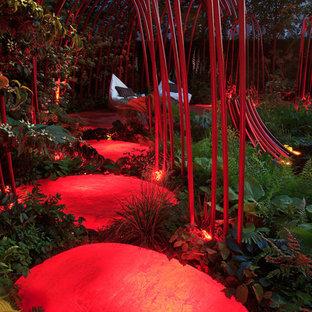 Bild på en trädgård
