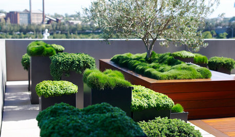 13 Questions to Ask Before Building a Rooftop Terrace