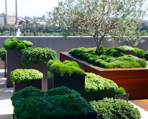 Eclectic landscape ideas designs remodels photos for Rooftop garden designs