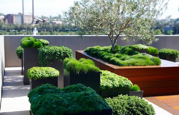 Eclectic Garden by Secret Gardens