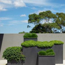Eclectic Landscape by Secret Gardens