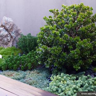 Пример оригинального дизайна: участок и сад в стиле фьюжн