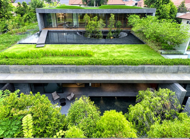 10 reasons to love a green roof. Black Bedroom Furniture Sets. Home Design Ideas