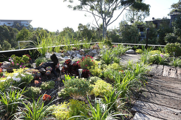Contemporary Landscape by Code Green Pty Ltd