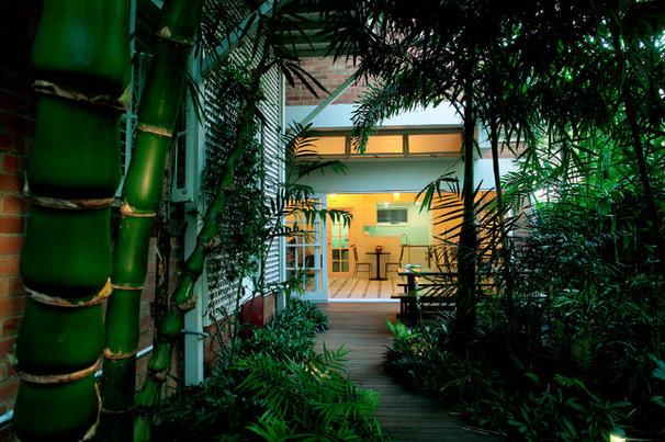 Tropical Landscape by Lencom Pty Ltd