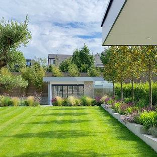 Contemporary garden in London.