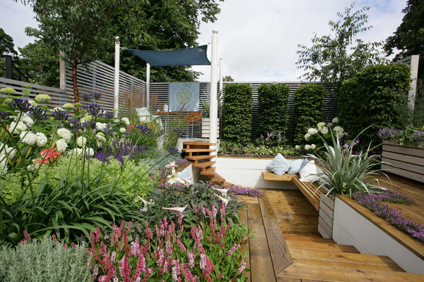 Contemporary Patio by Helen Williams Garden Design