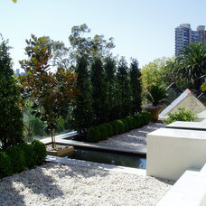 Contemporary Landscape by Abelia Gardens