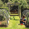 Houzz Call: Home Farmers, Show Us Your Edible Gardens