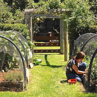 Foto på en lantlig trädgård i full sol, med en köksträdgård