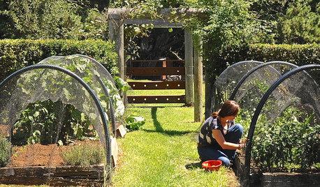 Как правильно: Отдыхать в саду, работая физически