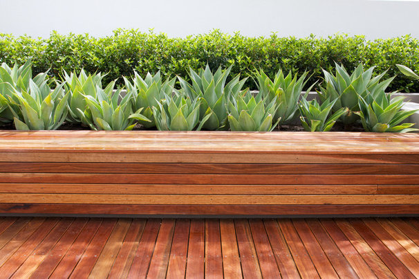Contemporary Landscape by Tim Davies Landscaping