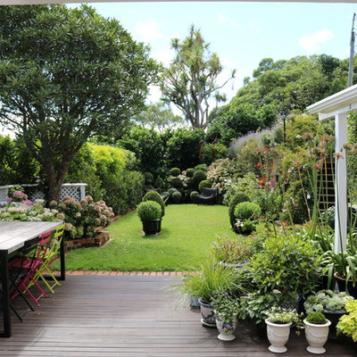 Design ideas for a mid-sized contemporary backyard landscaping in Wellington with decking.