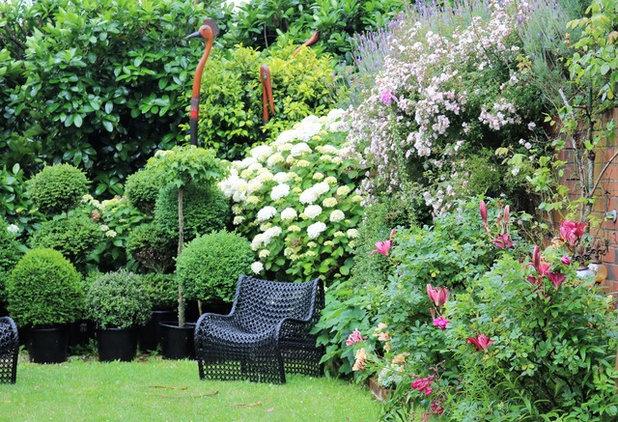 Contemporaneo Giardino by HEDGE Garden Design & Nursery