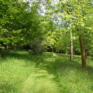Photo of a large traditional shaded garden in Hampshire with a garden path.
