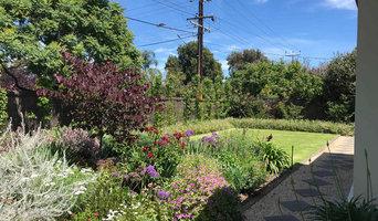 Hawthorn | Front Garden | Landscape Design | Driveway re-design