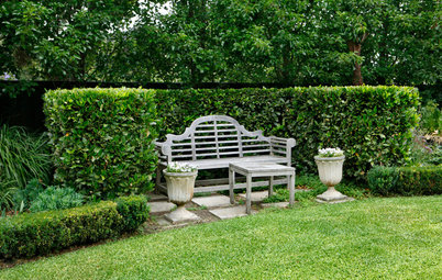12 Reasons to Plant a Hedge