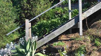 Hayborough | Victor Harbor | Front Garden | Coastal Garden