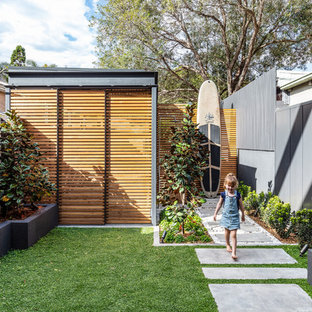Design ideas for a contemporary backyard garden in Sydney with a garden path.