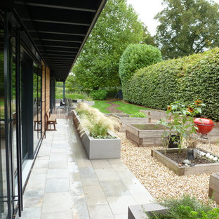Contemporary back garden in Hampshire with a vegetable patch and gravel.
