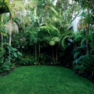 Herne Bay - Subtropical Paradise
