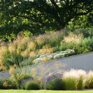 Idee per un grande giardino xeriscape design esposto in pieno sole nel cortile laterale in estate con un muro di contenimento