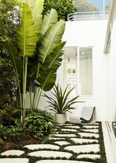 Modern Garden by Luigi Rosselli Architects