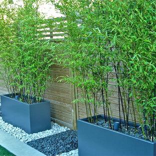 Idéer för en mellanstor modern trädgård i full sol på sommaren, med en fontän och marksten i betong