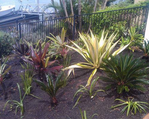 Fotos de jardines dise os de jardines ex ticos en ladera for 500 hillside terrace bessemer al