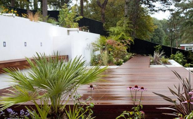 Contemporary Garden by JPS Landscape Design