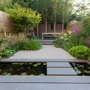 Cette image montre un jardin arrière asiatique avec un point d'eau.