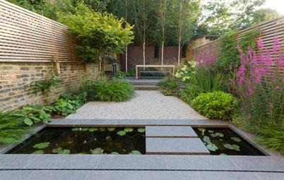 Garden Tour: A Small London Backyard Becomes a Beautiful Oasis