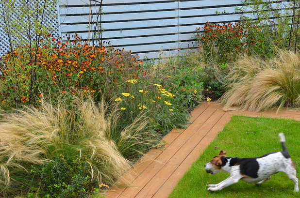 Contemporary Landscape by Anthos Garden Design