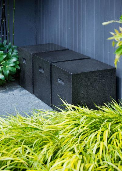 Contemporary Garden by Charlotte  Rowe Garden Design