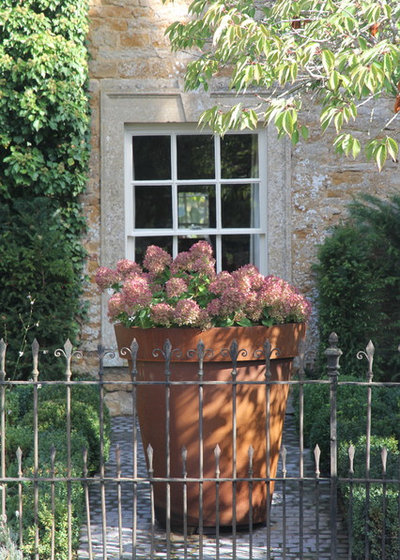 Contemporary Garden by Hendy Curzon Gardens Ltd