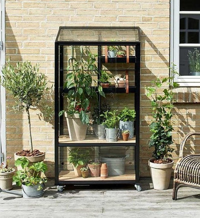 Modern Garden by Greenhouse Stores