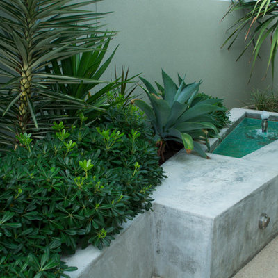 This is an example of a small contemporary courtyard concrete paver water fountain landscape in Perth.